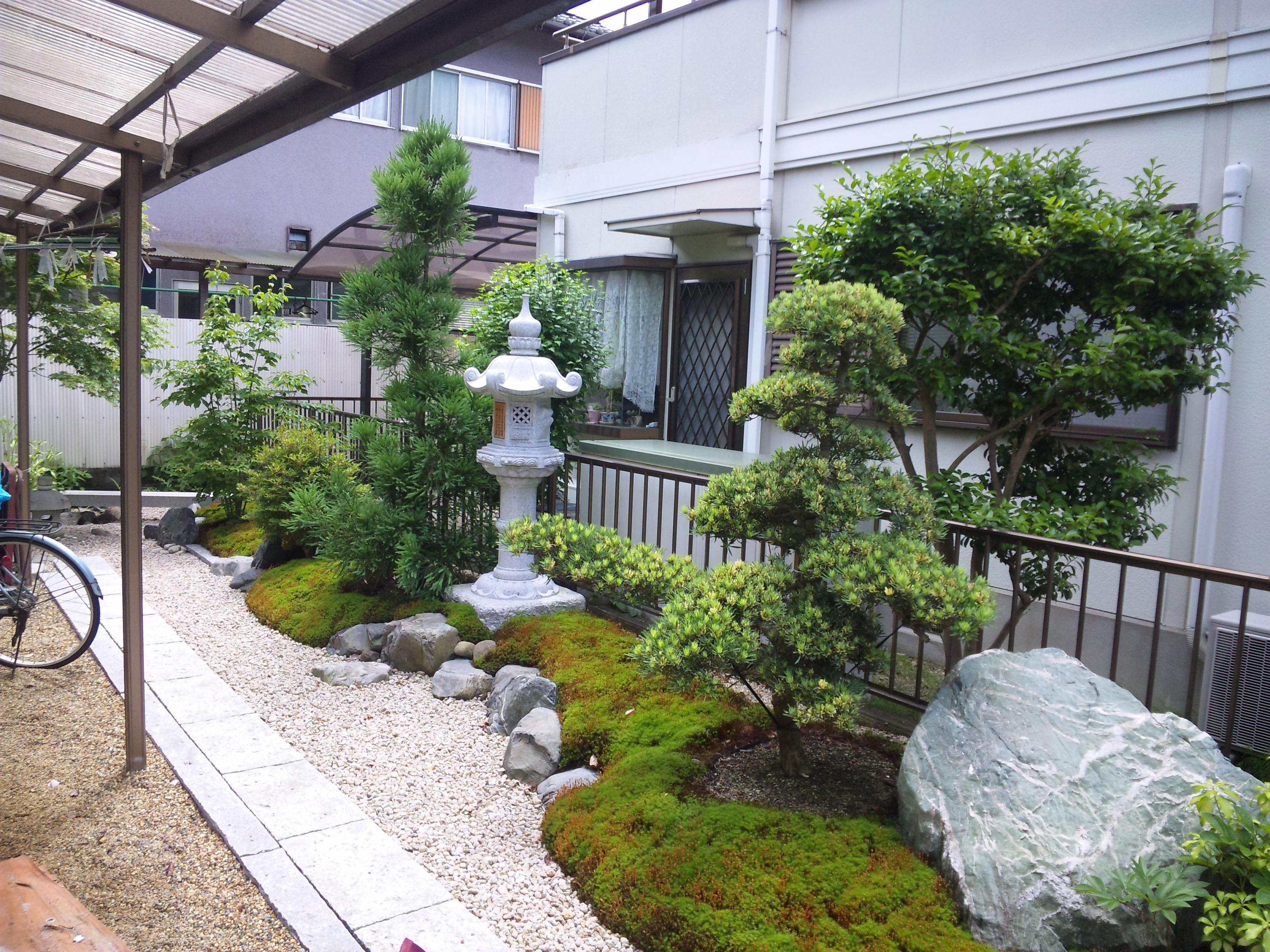 K - Plantes jardin japonais ...